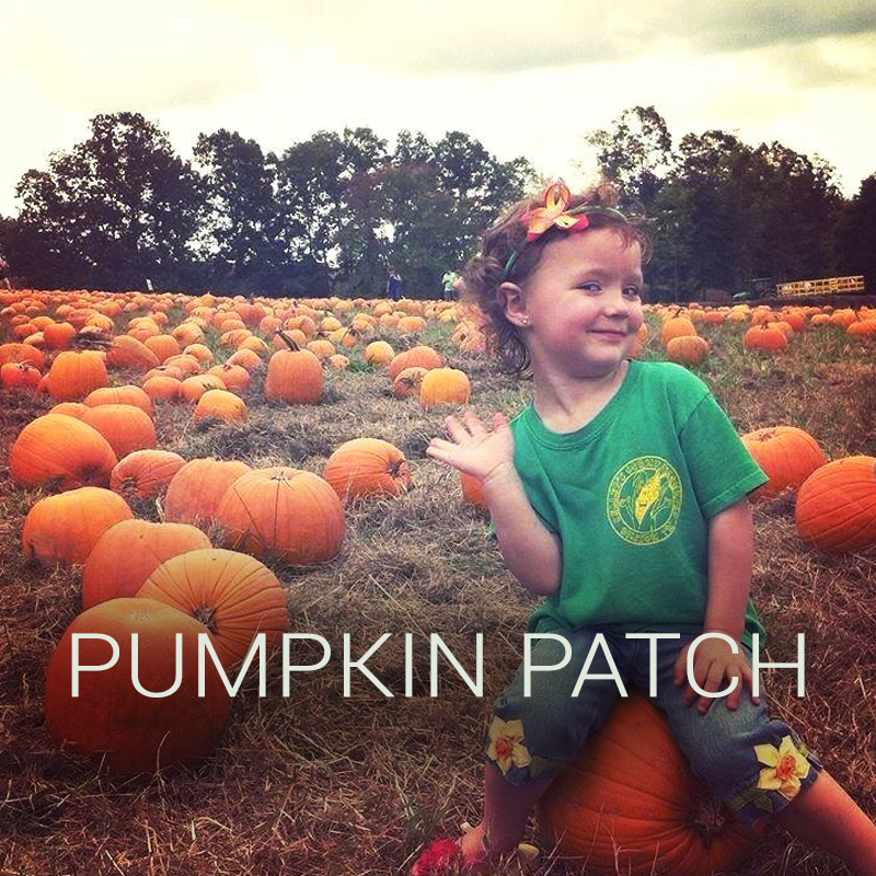 kcc-pumpkin-patch